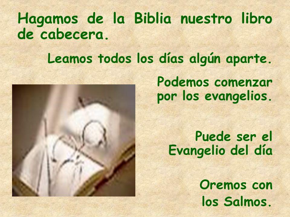 Hagamos de la Biblia nuestro libro de cabecera. Leamos todos los días algún aparte. Podemos comenzar por los evangelios. Puede ser el Evangelio del dí