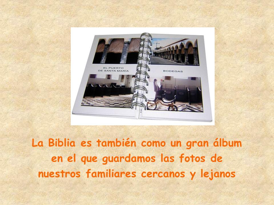La Biblia es también como un gran álbum en el que guardamos las fotos de nuestros familiares cercanos y lejanos