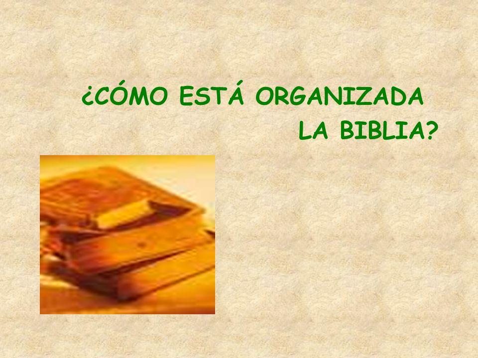 ¿CÓMO ESTÁ ORGANIZADA LA BIBLIA?