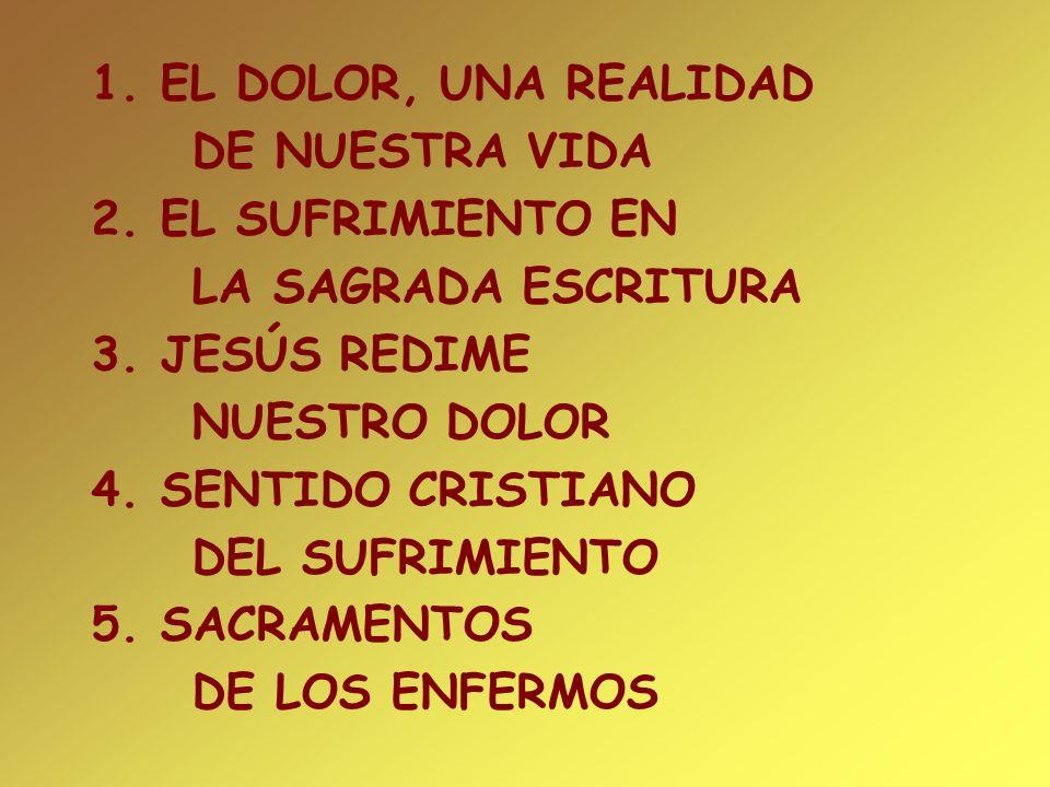 1. EL DOLOR, UNA REALIDAD DE NUESTRA VIDA 2. EL SUFRIMIENTO EN LA SAGRADA ESCRITURA 3. JESÚS REDIME NUESTRO DOLOR 4. SENTIDO CRISTIANO DEL SUFRIMIENTO