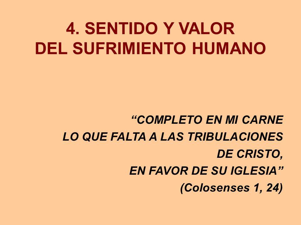 4. SENTIDO Y VALOR DEL SUFRIMIENTO HUMANO COMPLETO EN MI CARNE LO QUE FALTA A LAS TRIBULACIONES DE CRISTO, EN FAVOR DE SU IGLESIA (Colosenses 1, 24)