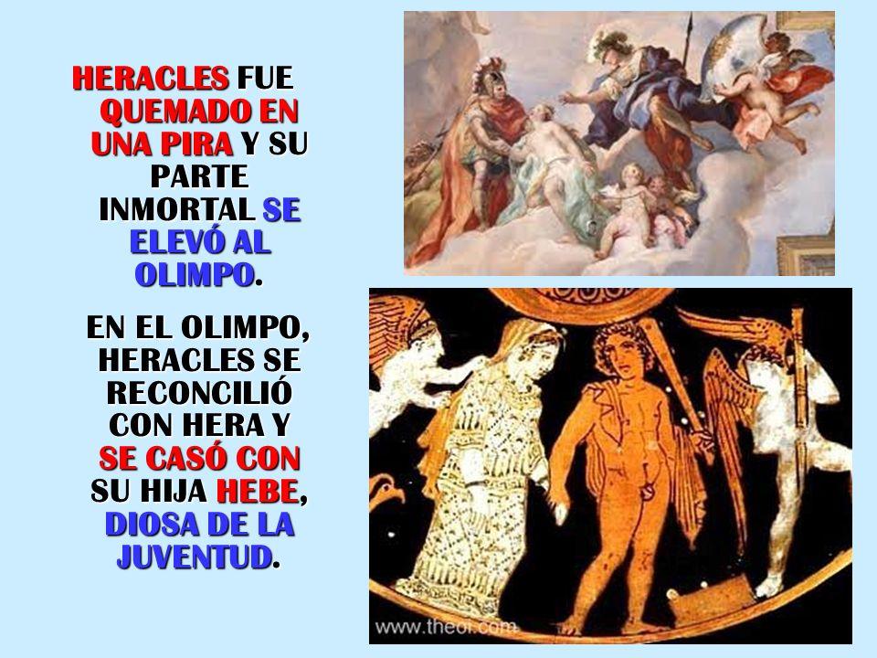HERACLES FUE QUEMADO EN UNA PIRA Y SU PARTE INMORTAL SE ELEVÓ AL OLIMPO. EN EL OLIMPO, HERACLES SE RECONCILIÓ CON HERA Y SE CASÓ CON SU HIJA HEBE, DIO