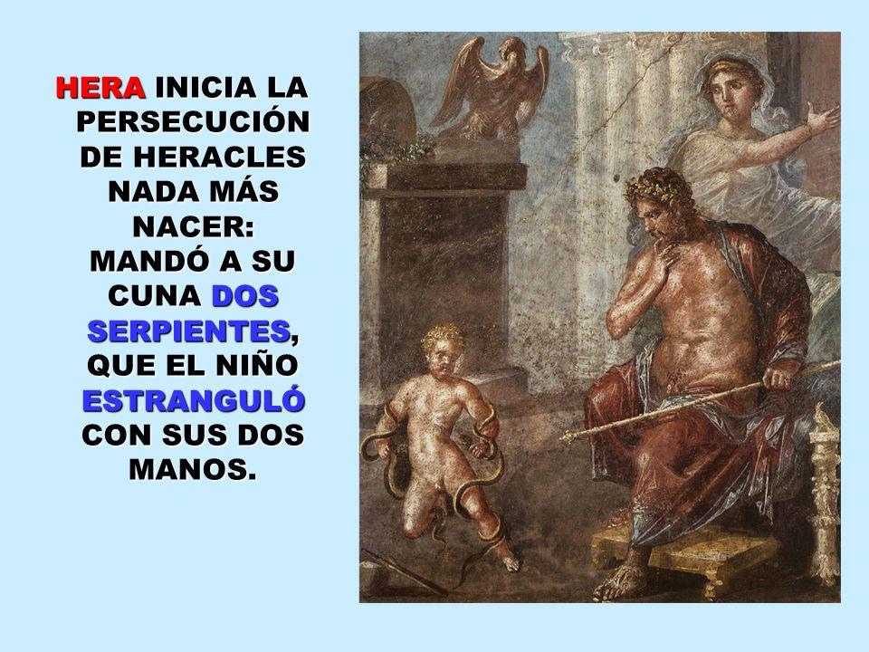 HERA INICIA LA PERSECUCIÓN DE HERACLES NADA MÁS NACER: MANDÓ A SU CUNA DOS SERPIENTES, QUE EL NIÑO ESTRANGULÓ CON SUS DOS MANOS. HERA INICIA LA PERSEC