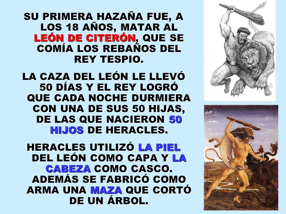 SU PRIMERA HAZAÑA FUE, A LOS 18 AÑOS, MATAR AL LEÓN DE CITERÓN, QUE SE COMÍA LOS REBAÑOS DEL REY TESPIO. LA CAZA DEL LEÓN LE LLEVÓ 50 DÍAS Y EL REY LO