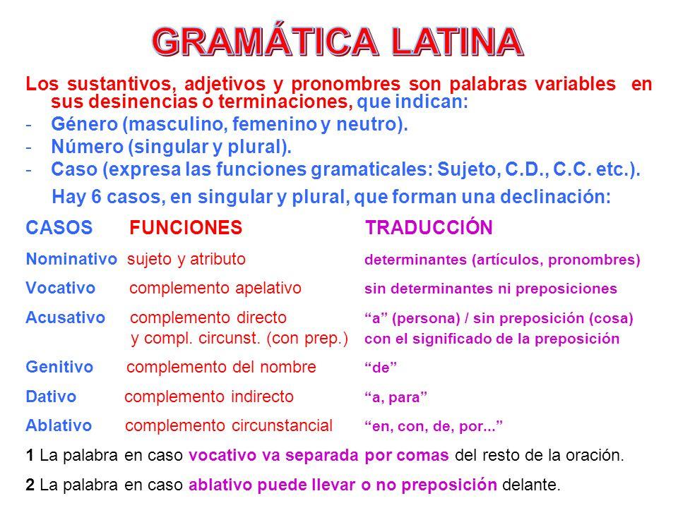 Los sustantivos, adjetivos y pronombres son palabras variables en sus desinencias o terminaciones, que indican: -Género (masculino, femenino y neutro)