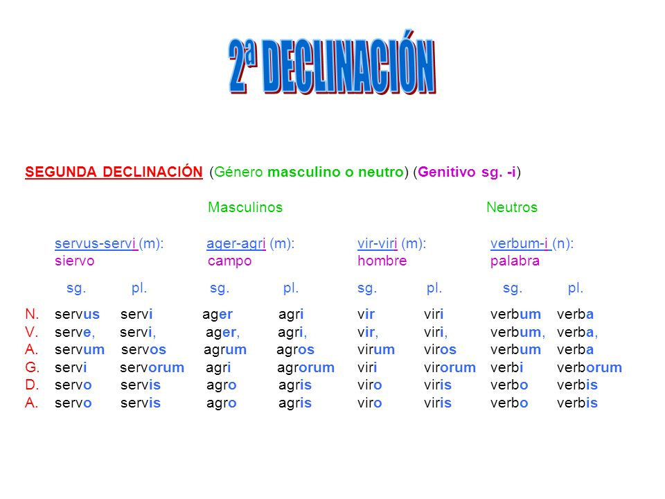 SEGUNDA DECLINACIÓN (Género masculino o neutro) (Genitivo sg. -i) Masculinos Neutros servus-servi (m): ager-agri (m): vir-viri (m): verbum-i (n): sier