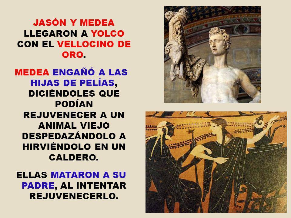 JASÓN Y MEDEA LLEGARON A YOLCO CON EL VELLOCINO DE ORO. MEDEA ENGAÑÓ A LAS HIJAS DE PELÍAS, DICIÉNDOLES QUE PODÍAN REJUVENECER A UN ANIMAL VIEJO DESPE