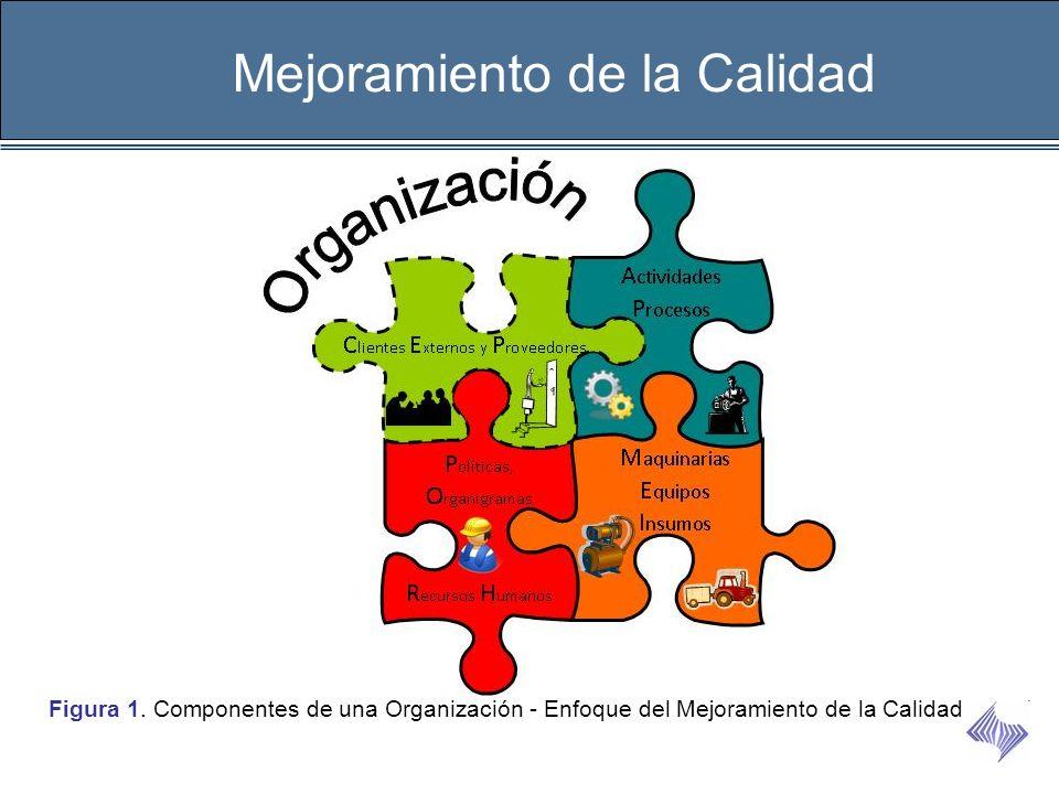 Mejoramiento de la Calidad Figura 1. Componentes de una Organización - Enfoque del Mejoramiento de la Calidad