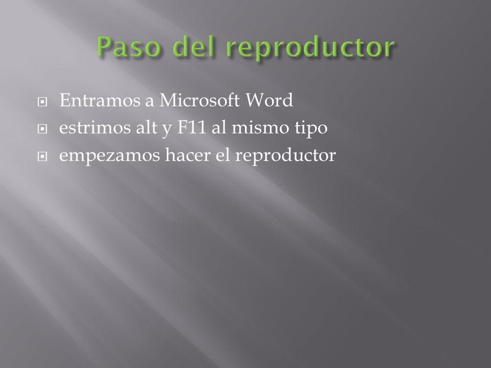 Entramos a Microsoft Word estrimos alt y F11 al mismo tipo empezamos hacer el reproductor