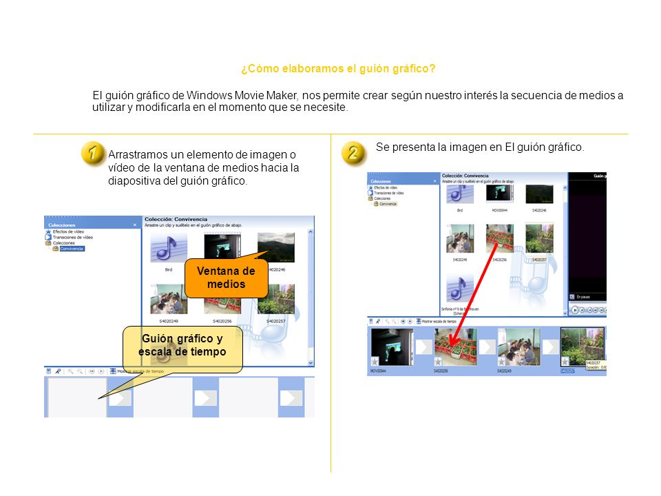 ¿Cómo importamos videos, imágenes y sonidos a una colección? Una colección contiene clips de audio, clips de vídeo o imágenes importadas que aparecen