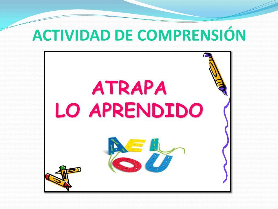 ACTIVIDAD DE COMPRENSIÓN