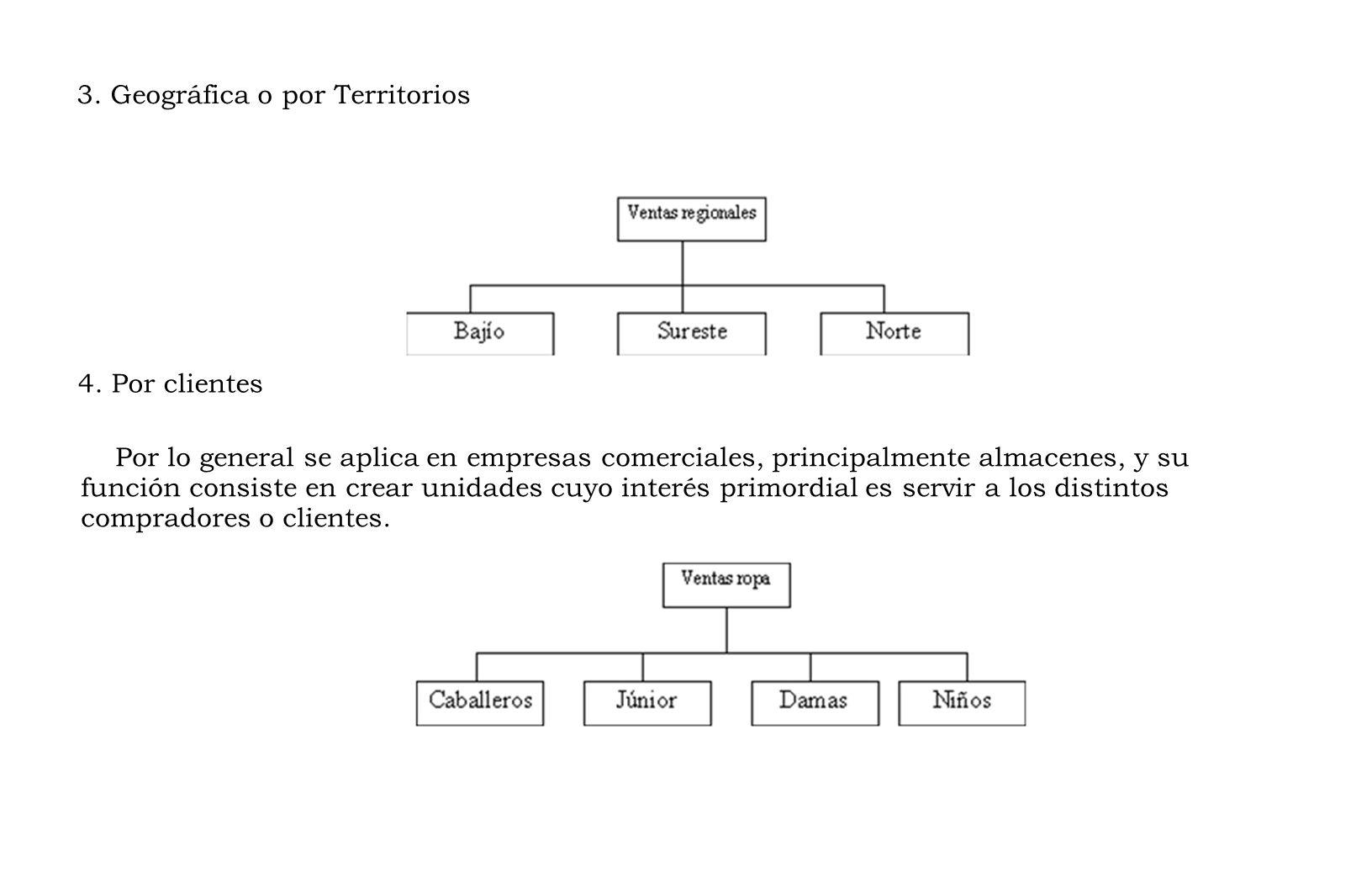 3.Geográfica o por Territorios 4.