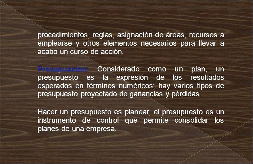procedimientos, reglas, asignación de áreas, recursos a emplearse y otros elementos necesarios para llevar a acabo un curso de acción. Hacer un presup