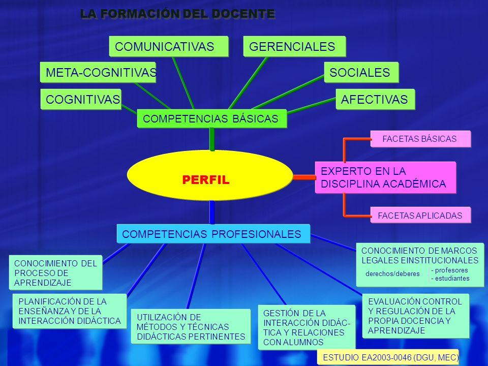 EXPERTO EN LA DISCIPLINA ACADÉMICA FACETAS BÁSICAS FACETAS APLICADAS PERFIL COMPETENCIAS BÁSICAS META-COGNITIVAS COGNITIVAS COMUNICATIVASGERENCIALES A