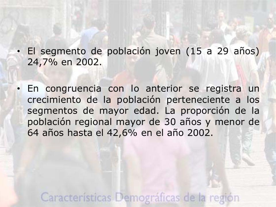 El segmento de población joven (15 a 29 años) 24,7% en 2002.