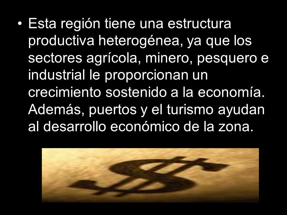 Esta región tiene una estructura productiva heterogénea, ya que los sectores agrícola, minero, pesquero e industrial le proporcionan un crecimiento so