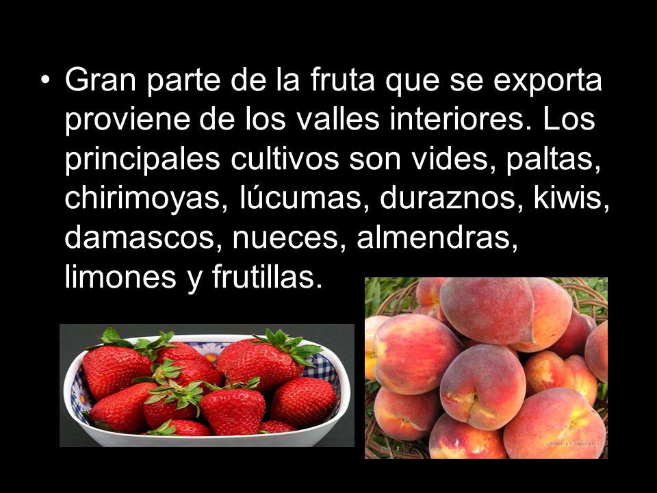 Gran parte de la fruta que se exporta proviene de los valles interiores. Los principales cultivos son vides, paltas, chirimoyas, lúcumas, duraznos, ki