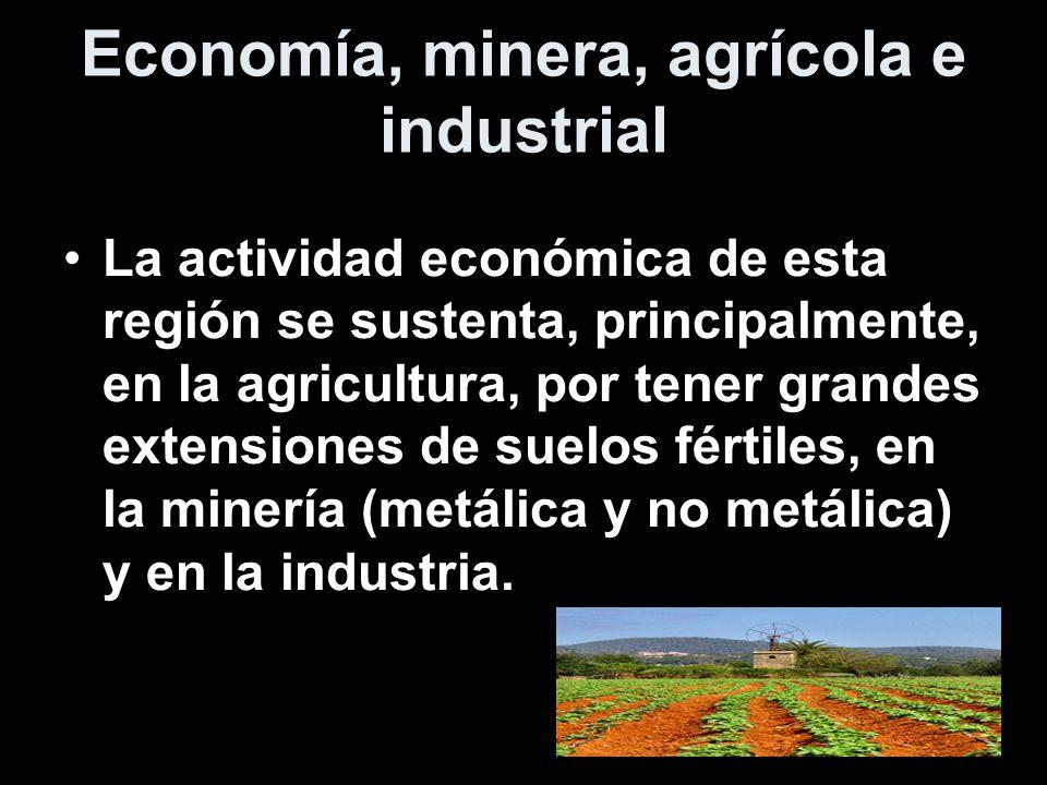 Economía, minera, agrícola e industrial La actividad económica de esta región se sustenta, principalmente, en la agricultura, por tener grandes extens