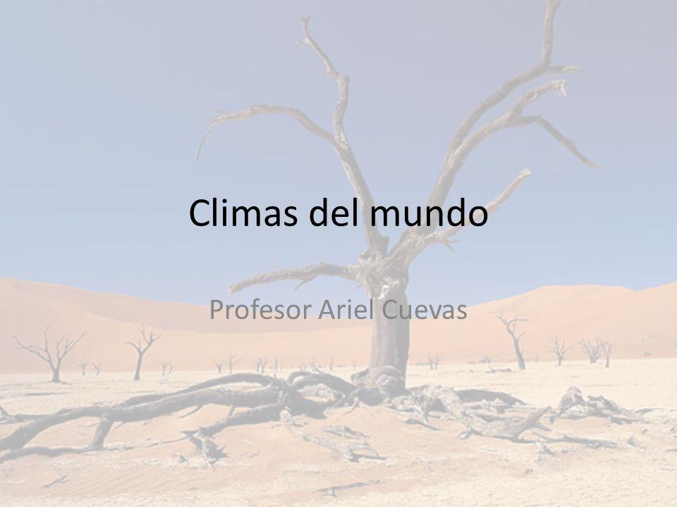 Climas del mundo Existe una gran variedad de climas en el planeta.