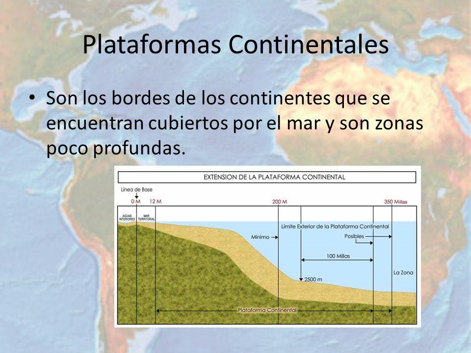 Plataformas Continentales Son los bordes de los continentes que se encuentran cubiertos por el mar y son zonas poco profundas.