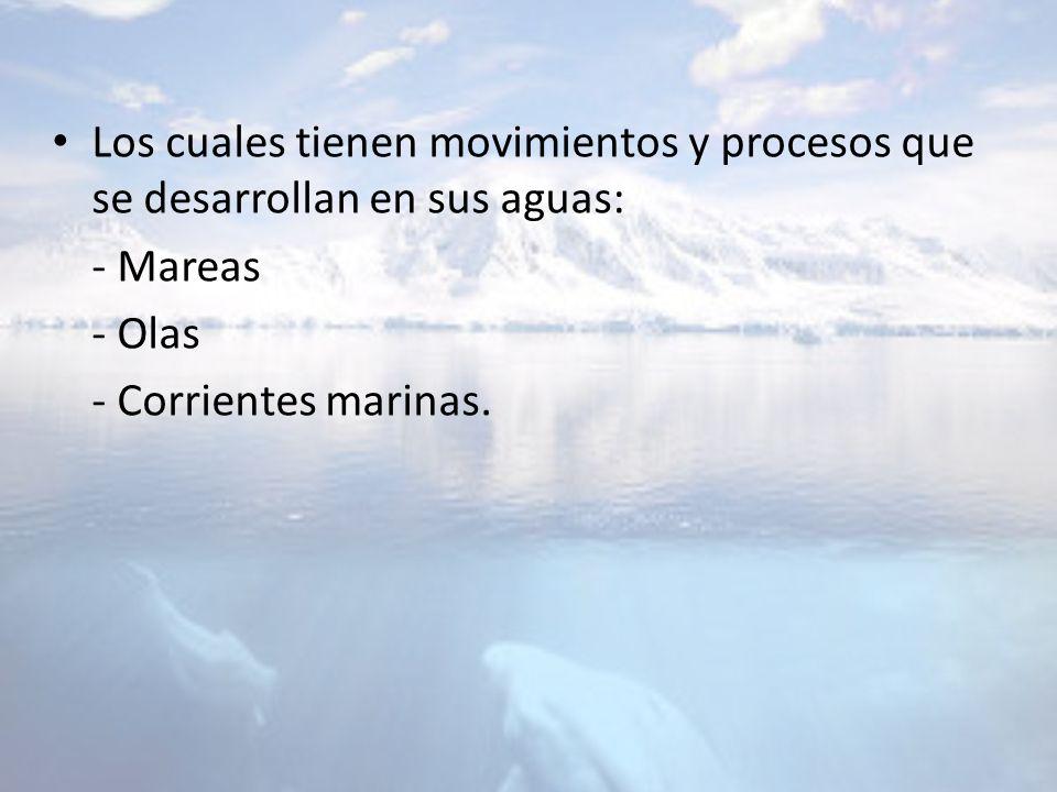 Los cuales tienen movimientos y procesos que se desarrollan en sus aguas: - Mareas - Olas - Corrientes marinas.
