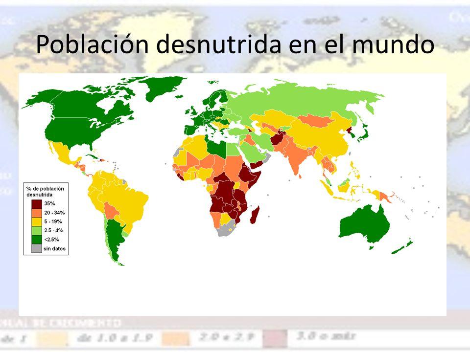 Población desnutrida en el mundo