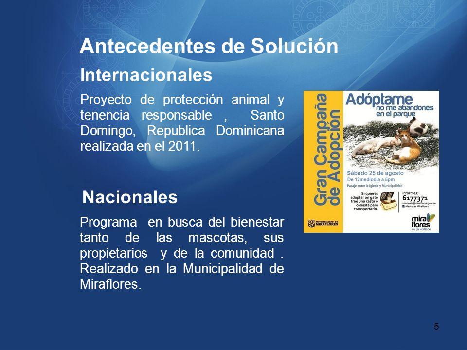 Antecedentes de Solución Internacionales Proyecto de protección animal y tenencia responsable, Santo Domingo, Republica Dominicana realizada en el 201