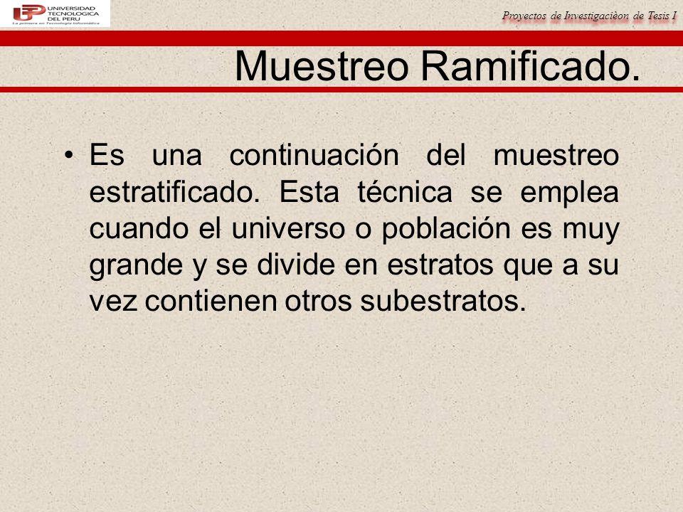 Proyectos de Investigacièon de Tesis I Muestreo Ramificado.