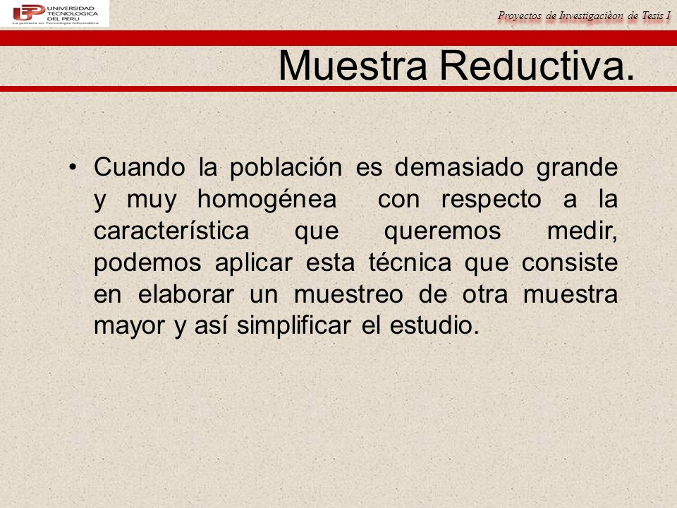 Proyectos de Investigacièon de Tesis I Muestra Reductiva.