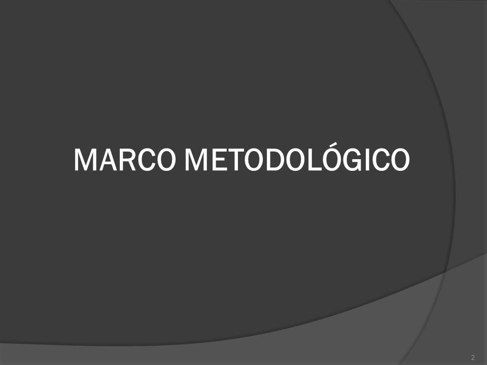 2 MARCO METODOLÓGICO