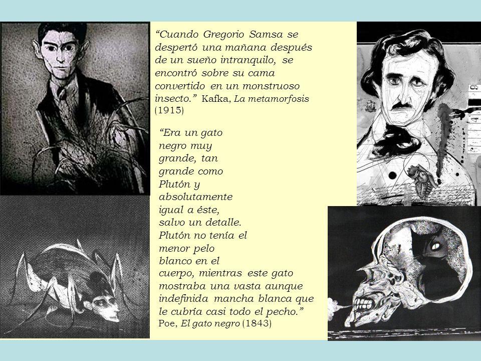 REFERENCIAS Aguiar e Silva, V.M. de. (1972). Teoría de la literatura.