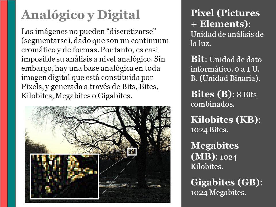 Analógico y Digital Las imágenes no pueden discretizarse (segmentarse), dado que son un continuum cromático y de formas. Por tanto, es casi imposible