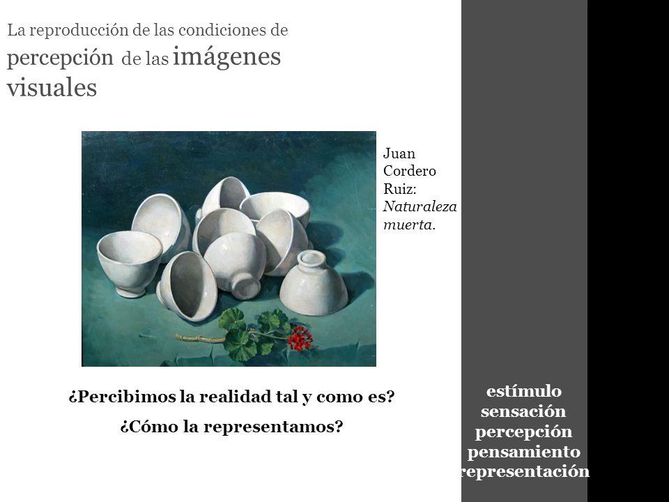 estímulo sensación percepción pensamiento representación La reproducción de las condiciones de percepción de las imágenes visuales ¿Percibimos la real