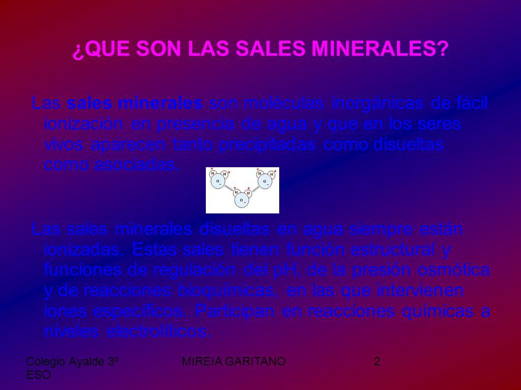 Colegio Ayalde 3º ESO MIREIA GARITANO3 SALES MINERALES EN LOS SERES VIVOS Los procesos vitales requieren la presencia de ciertas sales bajo la forma de iones como los cloruros, los carbonatos y los sulfatos.