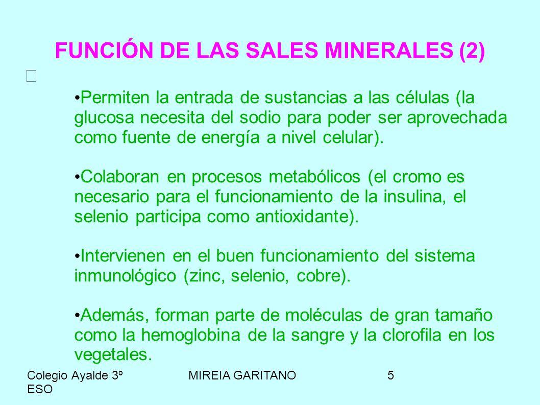 Colegio Ayalde 3º ESO MIREIA GARITANO6 FUENTES ALIMENTARIAS DE MINERALES (1) Calcio: Leche y derivados, frutos secos, legumbres y otros.
