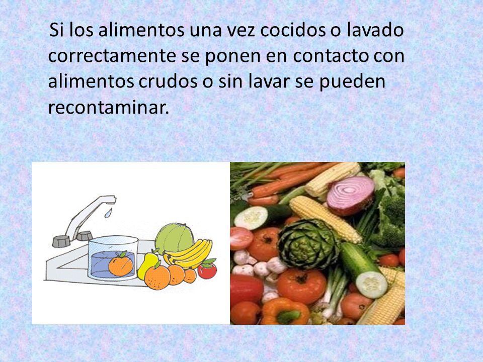 Las bacterias que generalmente se encuentran en los alimentos son eliminadas en su mayoría durante la cocción y durante el lavado en el caso de frutas