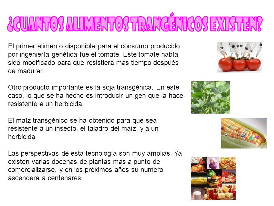 El primer alimento disponible para el consumo producido por ingeniería genética fue el tomate. Este tomate había sido modificado para que resistiera m