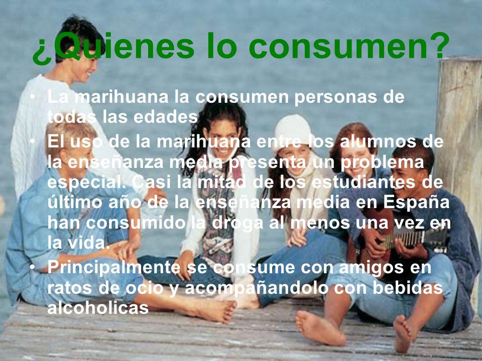 Consumo medicinal del cannabis -Actualmente se investigan los usos médicos de la marihuana para diversas enfermedades.