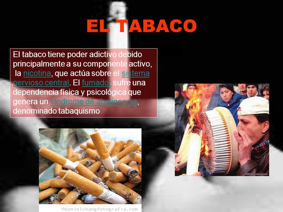 EL TABACO El tabaco tiene poder adictivo debido principalmente a su componente activo, la nicotina, que actúa sobre el sistema nervioso central. El fu
