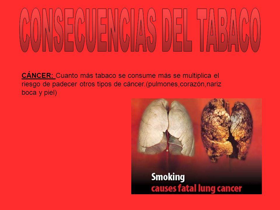 CÁNCER: Cuanto más tabaco se consume más se multiplica el riesgo de padecer otros tipos de cáncer.(pulmones,corazón,nariz boca y piel)