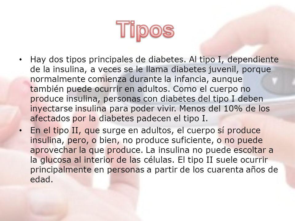 Hay dos tipos principales de diabetes. Al tipo I, dependiente de la insulina, a veces se le llama diabetes juvenil, porque normalmente comienza durant