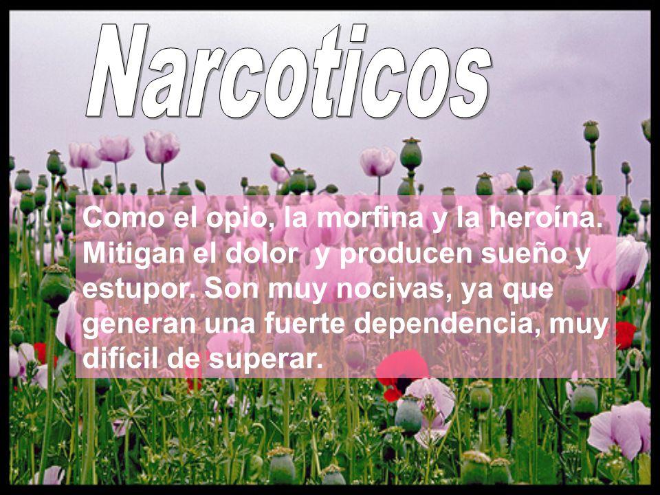 Como el opio, la morfina y la heroína. Mitigan el dolor y producen sueño y estupor. Son muy nocivas, ya que generan una fuerte dependencia, muy difíci
