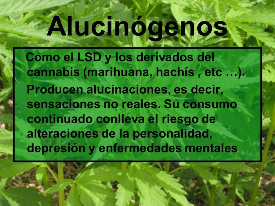 Alucinógenos Como el LSD y los derivados del cannabis (marihuana, hachís, etc …). Producen alucinaciones, es decir, sensaciones no reales. Su consumo