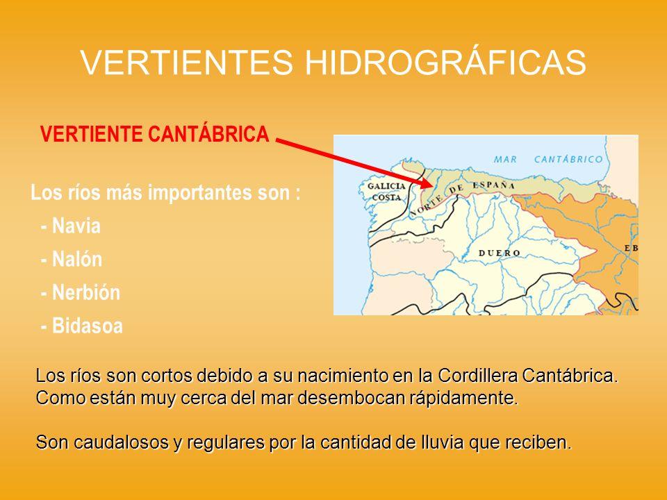 VERTIENTES HIDROGRÁFICAS VERTIENTE CANTÁBRICA Los ríos más importantes son : - Navia - Nalón - Nerbión - Bidasoa Los ríos son cortos debido a su nacim