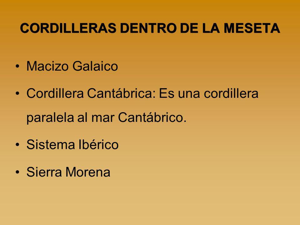 CORDILLERAS DENTRO DE LA MESETA Macizo Galaico Cordillera Cantábrica: Es una cordillera paralela al mar Cantábrico. Sistema Ibérico Sierra Morena