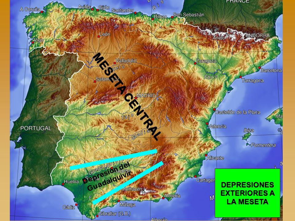 DEPRESIONES EXTERIORES A LA MESETA Depresión del Guadalquivir