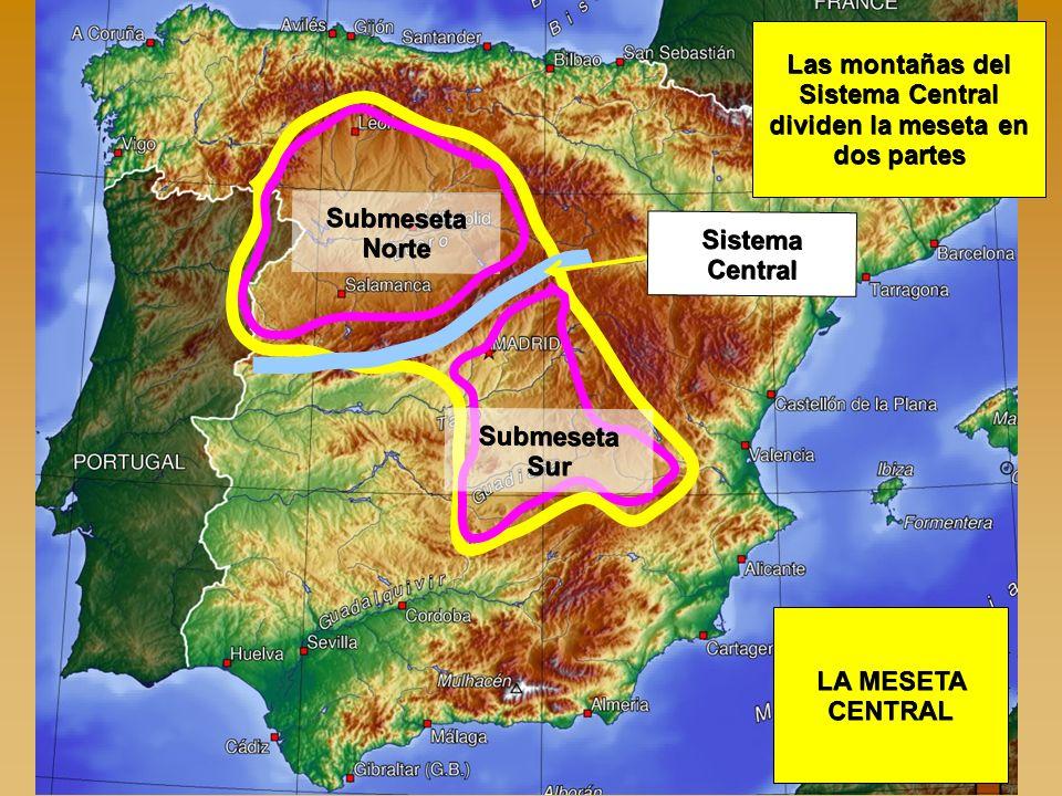 LA MESETA CENTRAL Submeseta Norte Submeseta Sur Las montañas del Sistema Central dividen la meseta en dos partes Sistema Central