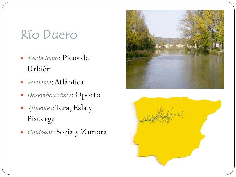 Río Guadiana Nacimiento : Lagunas de Ruidera Vertiente : Atlántica Desembocadura : Ayamonte Afluentes : Bullaque, Cigüela, Záncara Ciudades : Ciudad Real y Badajoz y Mérida