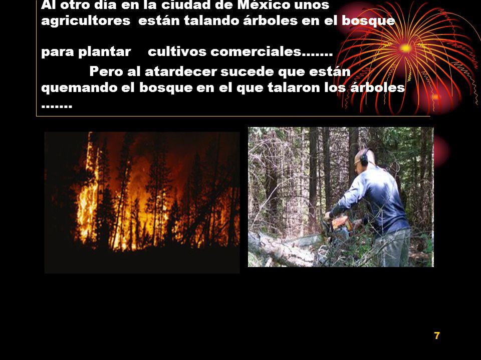 7 Al otro día en la ciudad de México unos agricultores están talando árboles en el bosque para plantar cultivos comerciales……. Pero al atardecer suced
