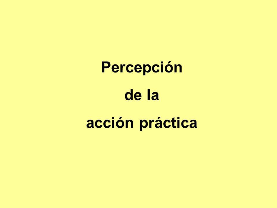 Percepción de la acción práctica
